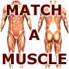 Match-A-Muscle A Free Puzzles Game