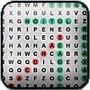 Play Baseball Word Search