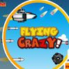 Play Flying Crazy