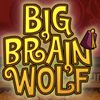 Play bigbrainwolf