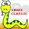Play Snake classic