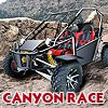 Play Canyon Race