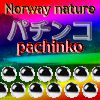 Play Norway nature pachinko