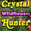 Play Crystal Hunter Wildflowers