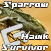 Play Sparrow Hawk Survivor