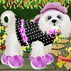 Cute Puppy Dressup A Free Dress-Up Game