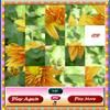 Play Flower Slider