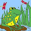 Play Frog and dragonflies coloring