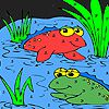 Play Frog friends in the lake coloring