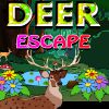 Play Deer Escape